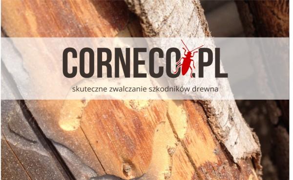 zwalczanie-szkodnikow-drewna-corneco-sp-z-oo