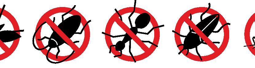 Firma Pest control
