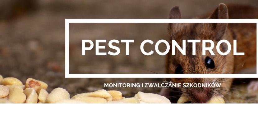 Pest Control – Profesjonalna firma zwalczającaszkodniki